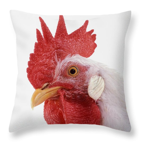 Rooster Throw Pillow by Thomas Kitchin & Victoria Hurst