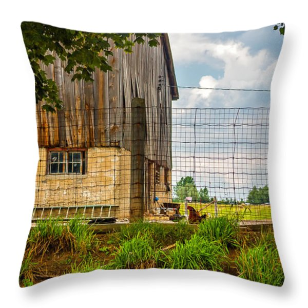 Rooster Turf Throw Pillow by Steve Harrington