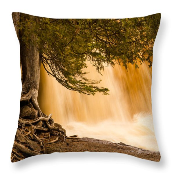 Rooted In Spring Throw Pillow by Mary Amerman