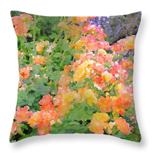 Rose 214 Throw Pillow by Pamela Cooper