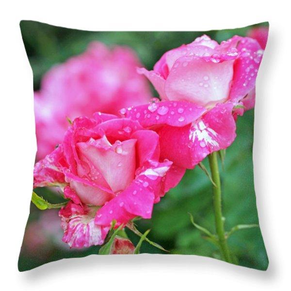Rose Bonbons Throw Pillow by Rona Black