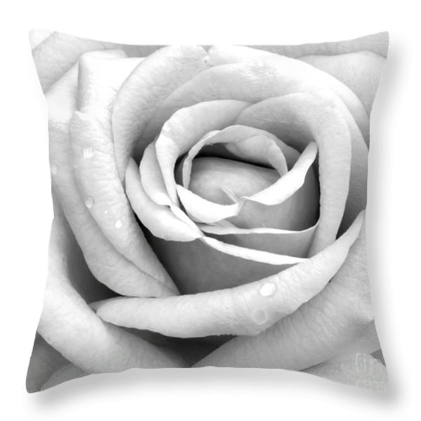 Rose With Tears Throw Pillow by Sabrina L Ryan