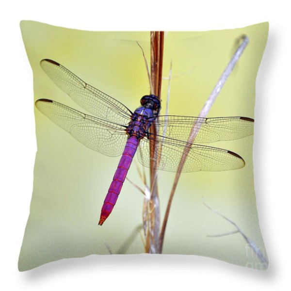 Roseate Skimmer Dragonfly Throw Pillow by Al Powell Photography USA