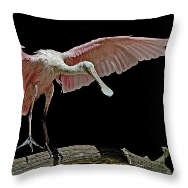 Roseate Spoonbill Throw Pillow by Stuart Harrison
