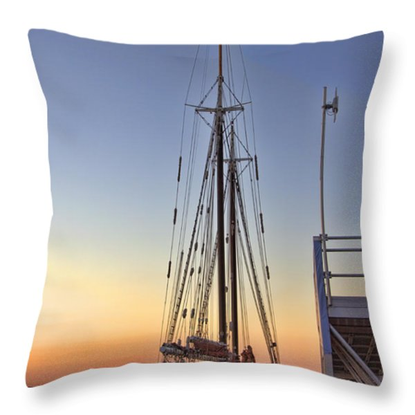 Roseway Throw Pillow by Joann Vitali