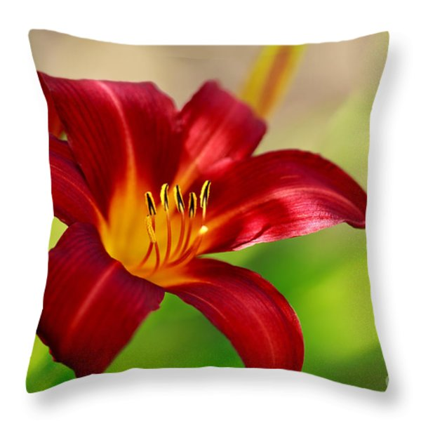 Ruby Red Throw Pillow by Reflective Moment Photography And Digital Art Images