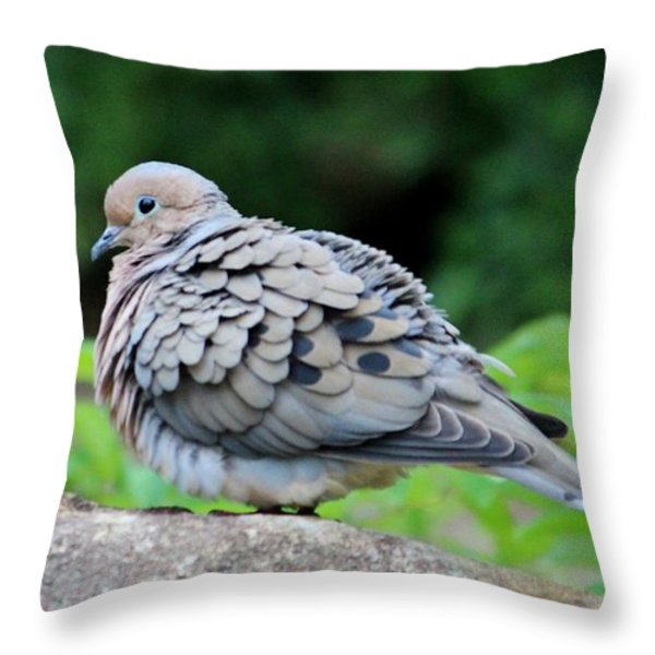 Ruffled Feathers Throw Pillow by Cynthia Guinn