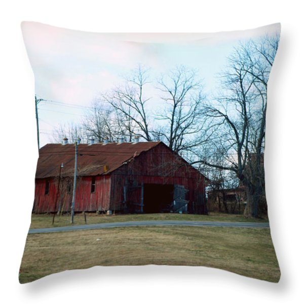 Rugged Shed II Throw Pillow by Paulette B Wright
