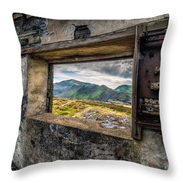 Ruin With A View  Throw Pillow by Adrian Evans