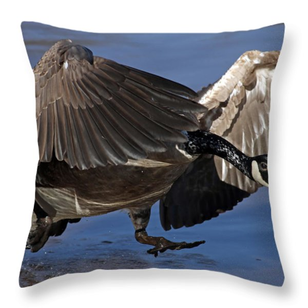 Running On Water Throw Pillow by Jim Nelson