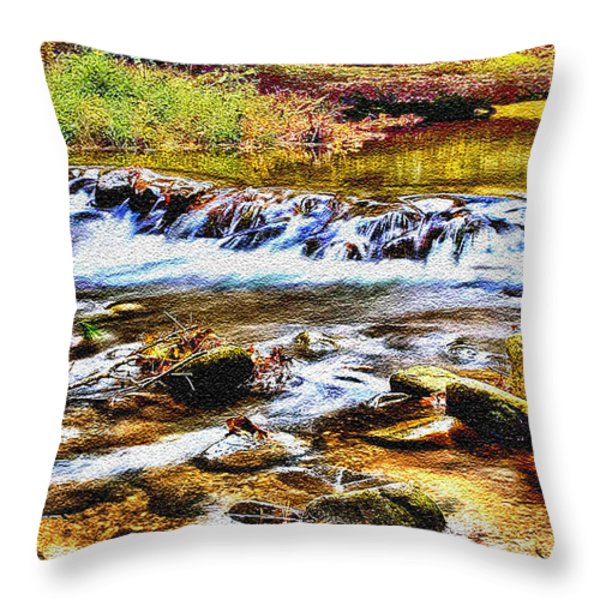 Running Stream In Yosemite National Park Throw Pillow by Bob and Nadine Johnston