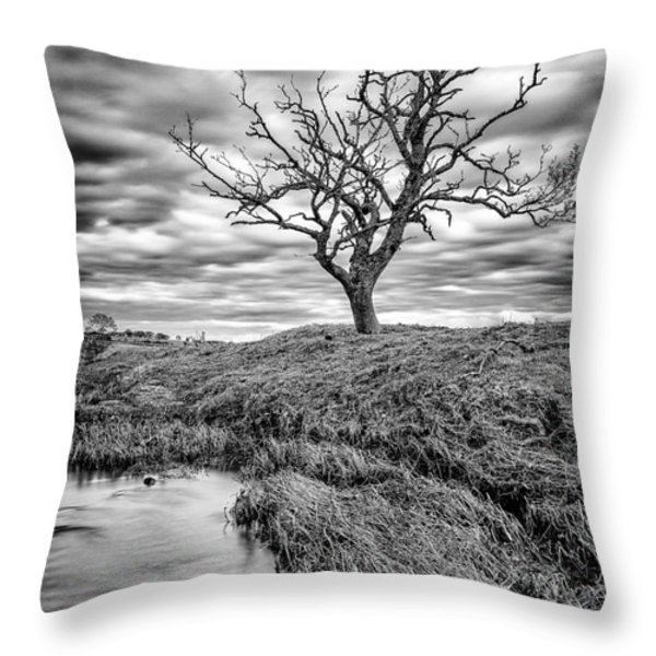 running through  Throw Pillow by John Farnan