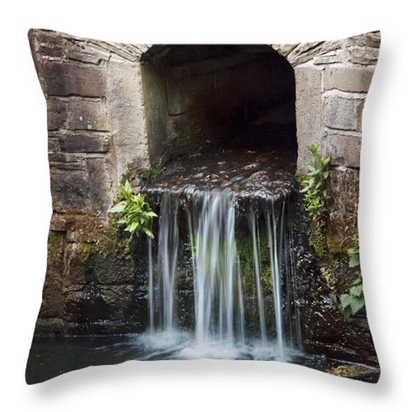 Running Water Throw Pillow by Svetlana Sewell