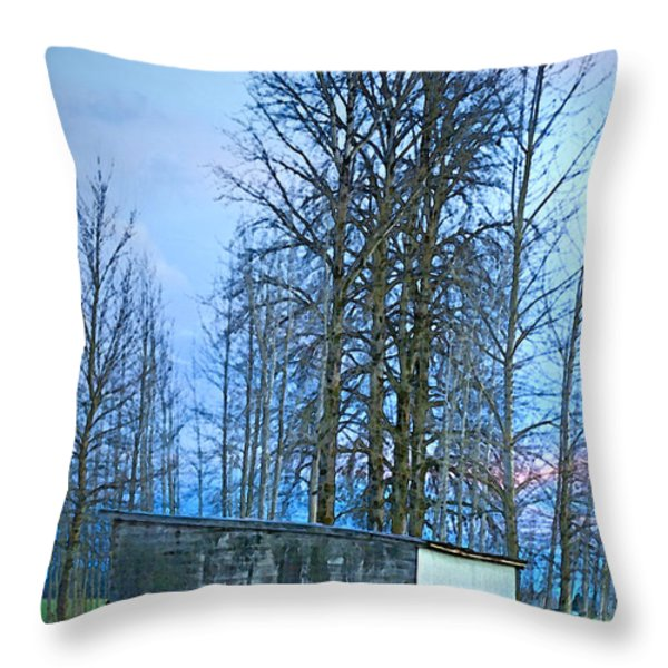 Rural Character Throw Pillow by Gwyn Newcombe