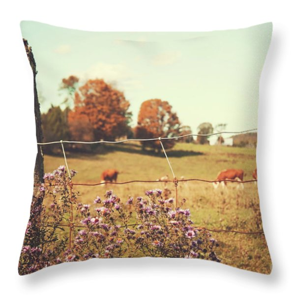 Rural Country Scene Throw Pillow by Sandra Cunningham