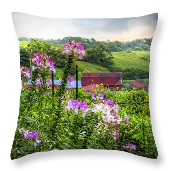 Rural Garden Throw Pillow by Debra and Dave Vanderlaan