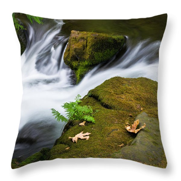 Rushing Water At Whatcom Falls Park Throw Pillow by Priya Ghose