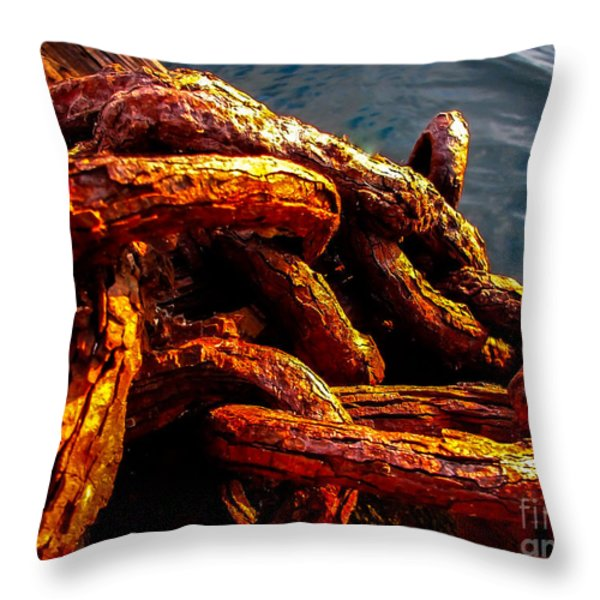Rust Throw Pillow by Robert Bales