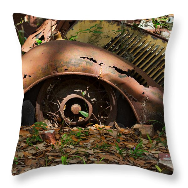 Rusted Throw Pillow by Louise Heusinkveld