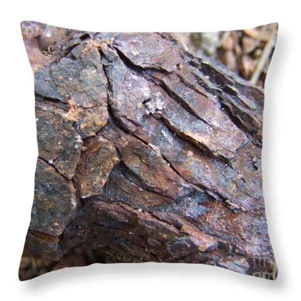 Rusted Rust Throw Pillow by Mary Deal