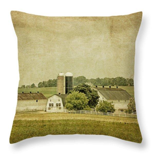 Rustic Farm - Barn Throw Pillow by Kim Hojnacki