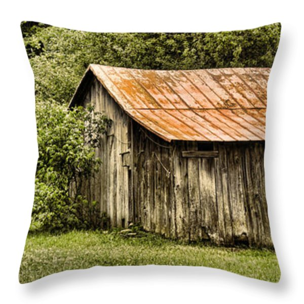 Rustic Throw Pillow by Heather Applegate