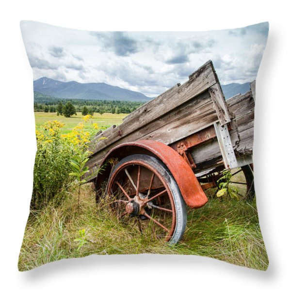 Rustic Landscapes - Wagon and wildflowers Throw Pillow by Gary Heller