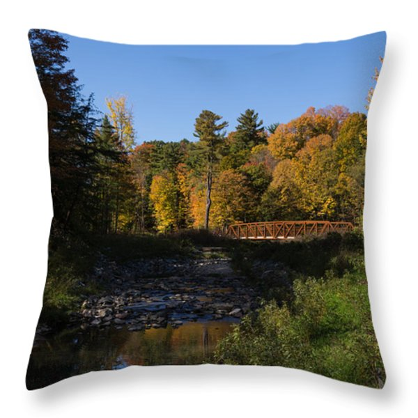 Rusty Little Bridge Complimenting The Fall Colors Throw Pillow by Georgia Mizuleva