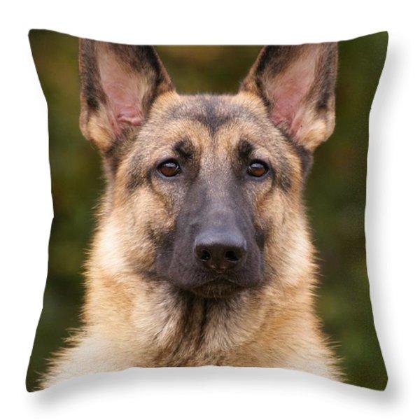 Sable German Shepherd Dog Throw Pillow by Sandy Keeton