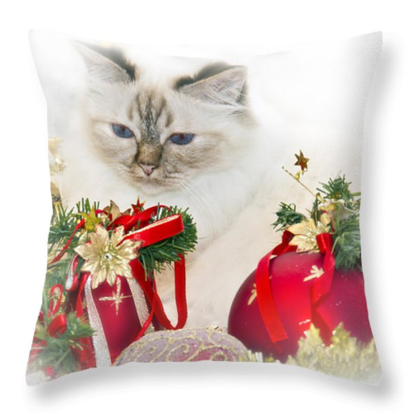 Sacred Cat Of Burma Christmas Time II Throw Pillow by Melanie Viola