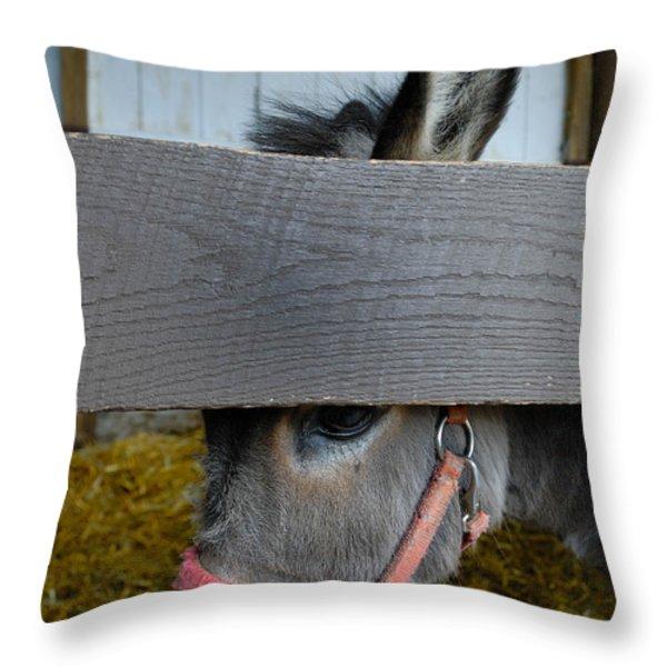 Sad Donkey Throw Pillow by Amy Cicconi