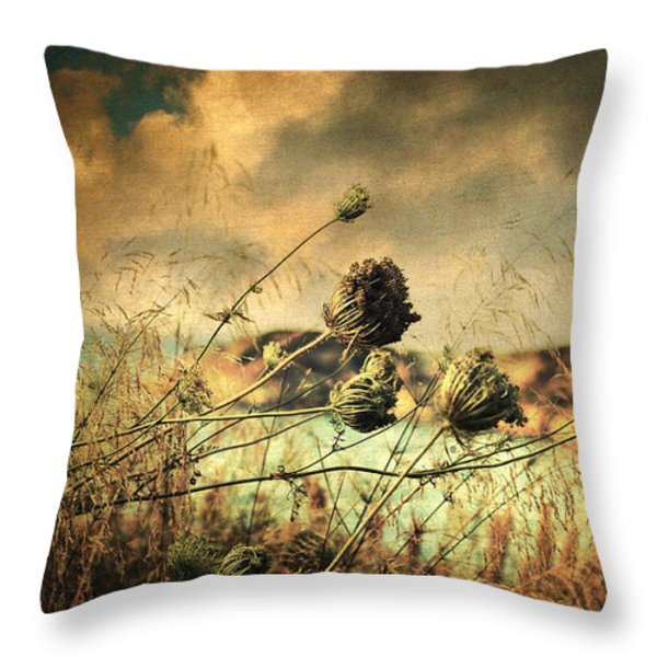 Sad Song of the Wind Throw Pillow by Taylan Soyturk