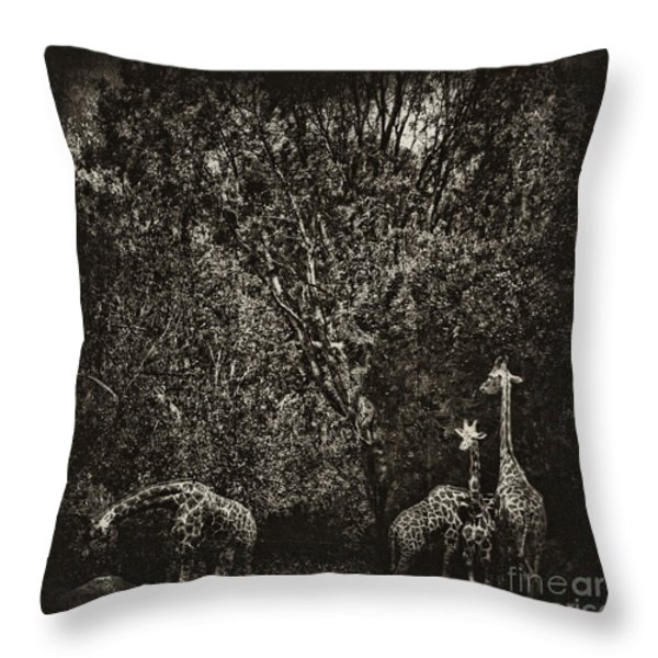 Safe Throw Pillow by Andrew Paranavitana