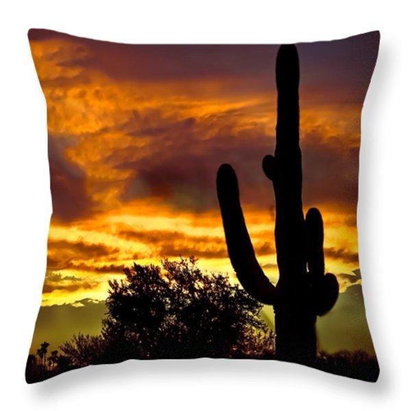 Saguaro Silhouette  Throw Pillow by Robert Bales