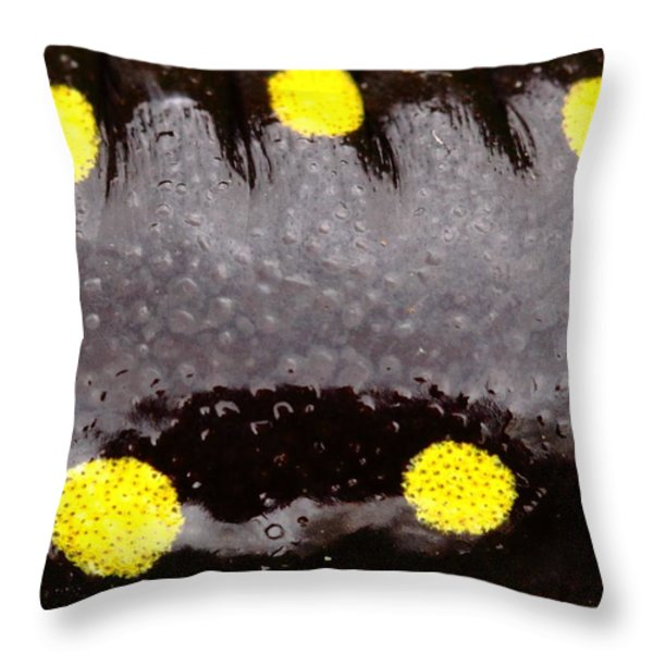Salamander Skin Throw Pillow by Bruce J Robinson