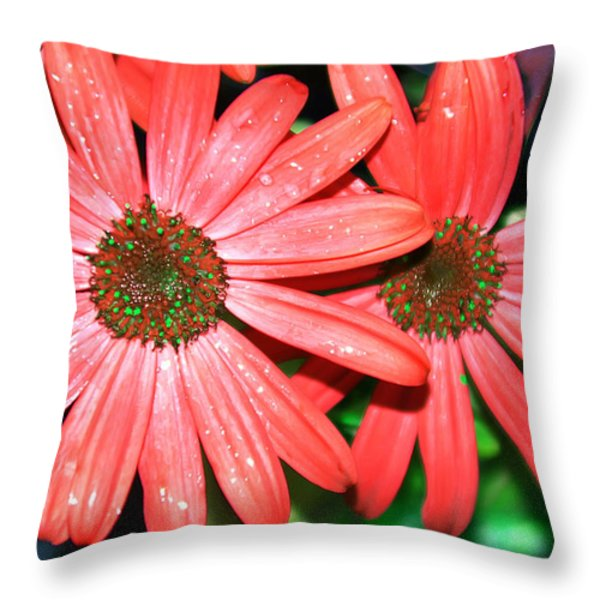 Salmon Daisy Throw Pillow by Aimee L Maher Photography and Art