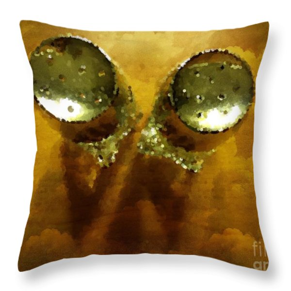 Salt And Pepper Throw Pillow by Mary Machare