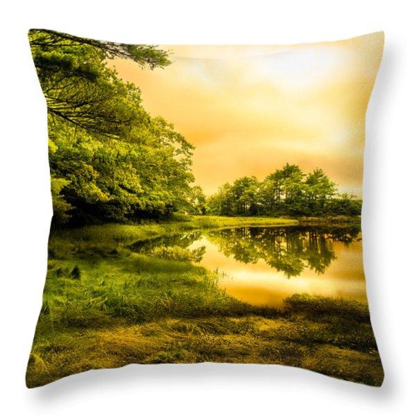Salt Marsh Kittery Maine Throw Pillow by Bob Orsillo
