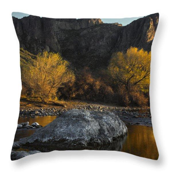 Salt River Fall Foliage Throw Pillow by Dave Dilli