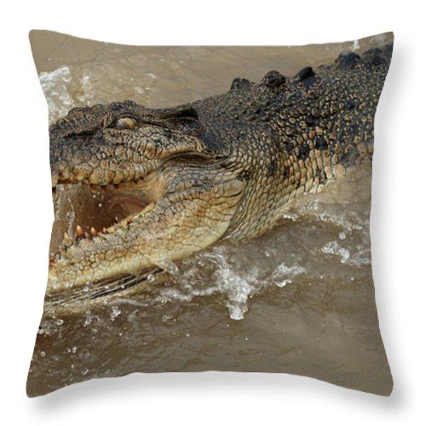 Saltwater Crocodile Throw Pillow by Bob Christopher