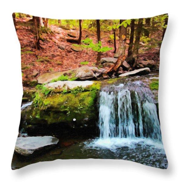 Sanctuary Throw Pillow by Lianne Schneider