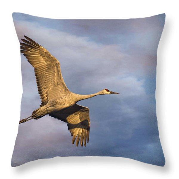Sandhill Crane In Flight Throw Pillow by Priscilla Burgers