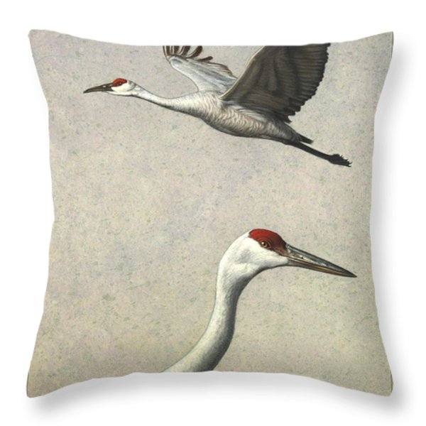 Sandhill Cranes Throw Pillow by James W Johnson