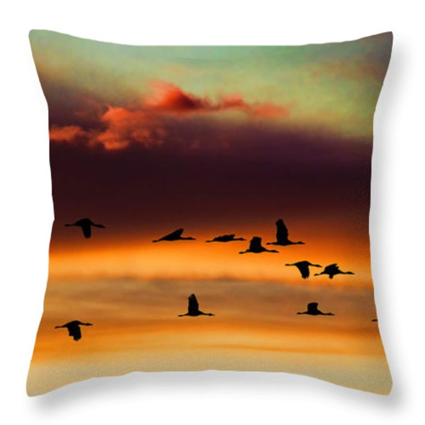 Sandhill Cranes Take The Sunset Flight Throw Pillow by Bill Kesler
