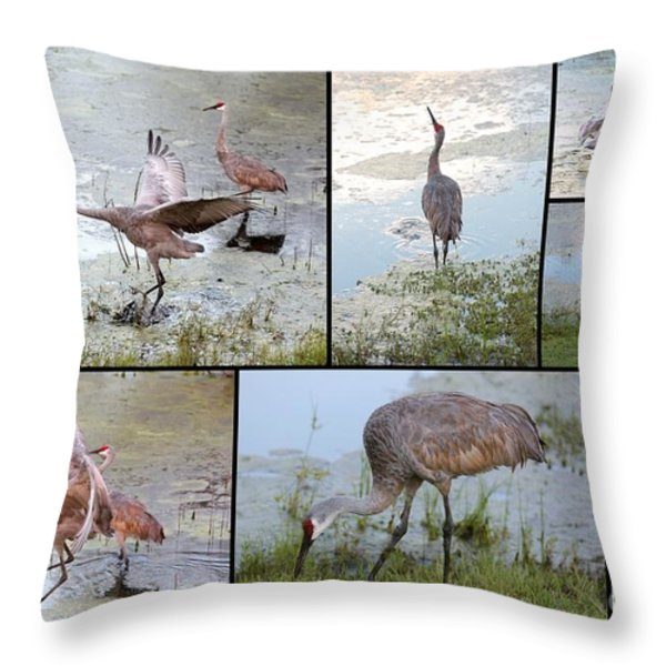 Sandhill Show Throw Pillow by Carol Groenen