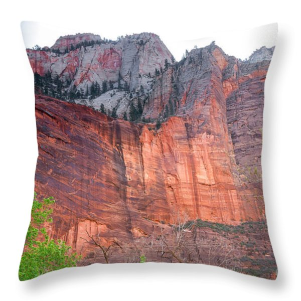 Sandstone Wall in Zion Throw Pillow by Robert Bales