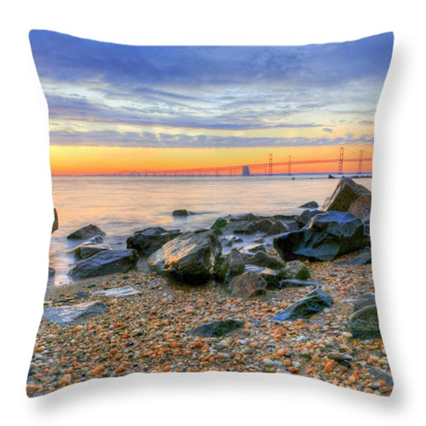 Sandy Throw Pillow by JC Findley