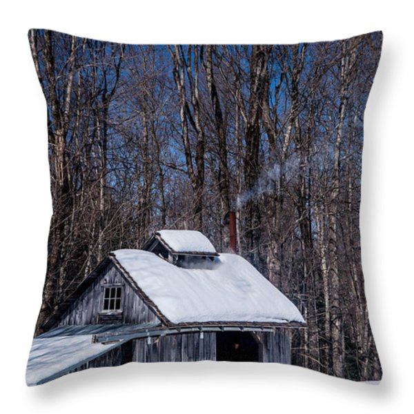 Sap House II Throw Pillow by Alana Ranney