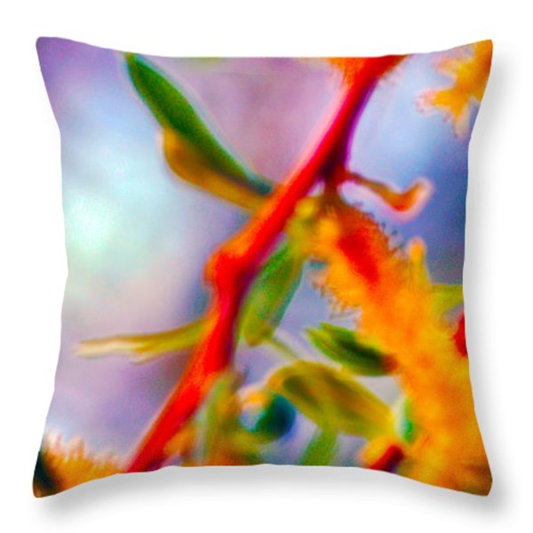 Saturated  Throw Pillow by Brent Dolliver