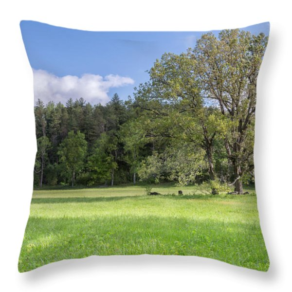 Save My Tree Throw Pillow by Jon Glaser
